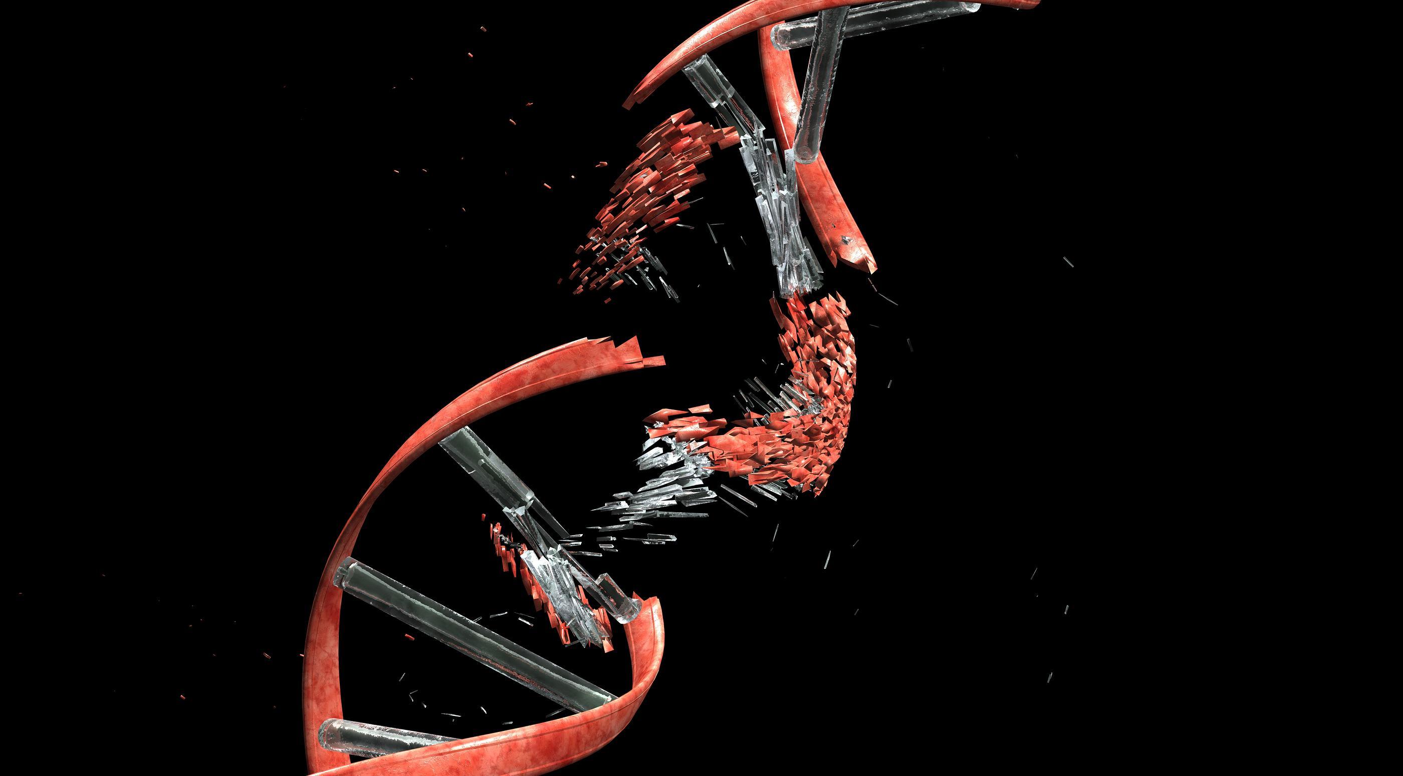 Нейроны рвут свою ДНК ради памяти