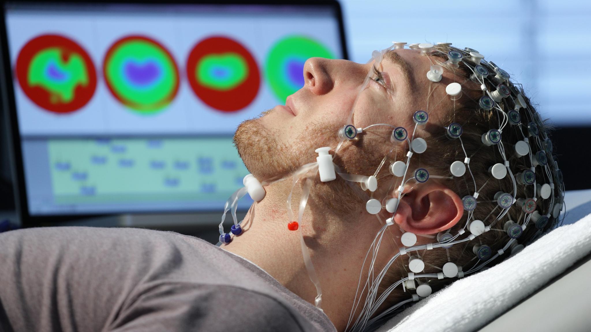 Ученые построили численную модель рабочей памяти