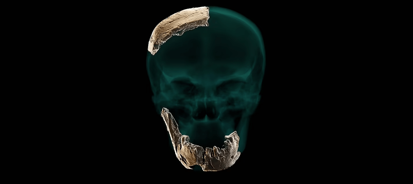 Нешер Рамла — предок неандертальцев с Ближнего Востока?