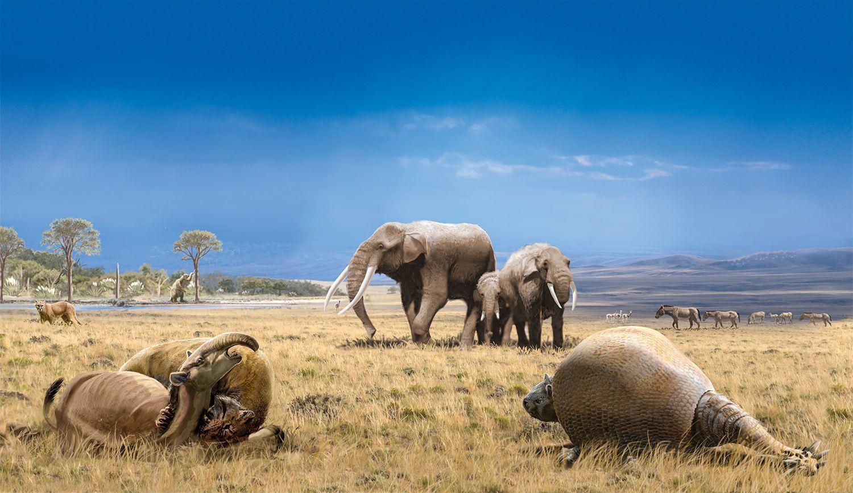 В Западной Африке обнаружили ископаемые остатки плиоценовых позвоночных