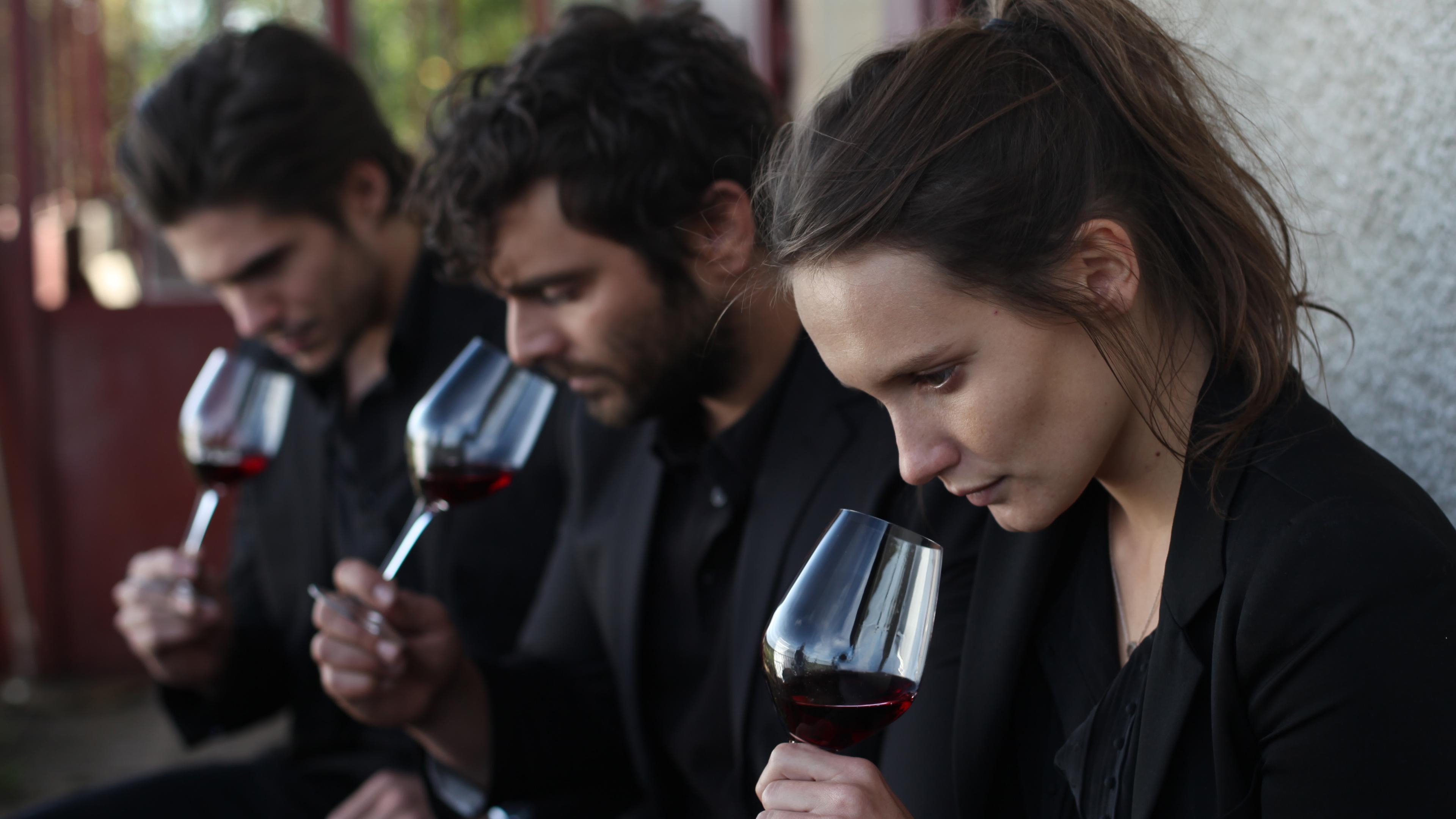 Ученые замедлили созревание винограда, чтобы улучшить качество вина