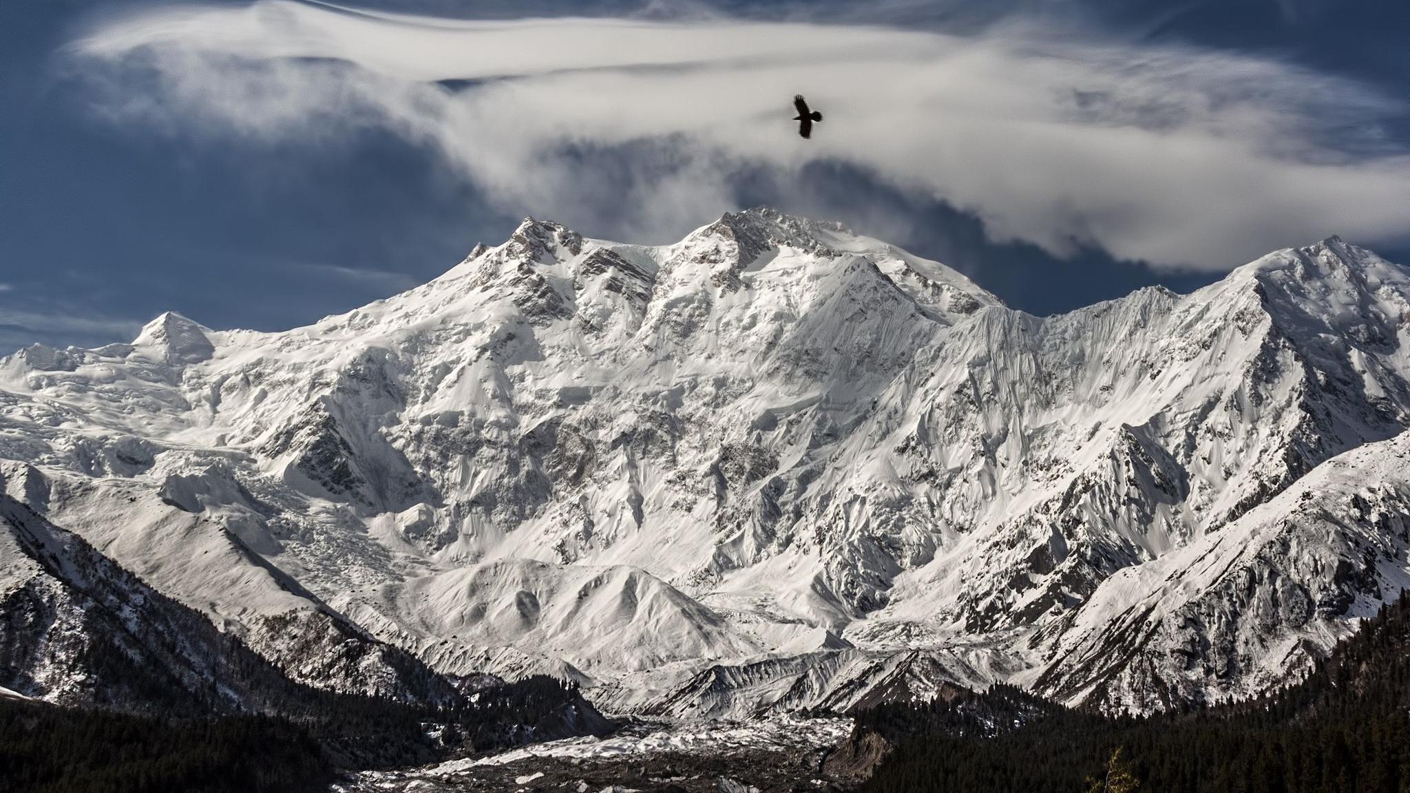 В ледниках Тибетского нагорья обнаружили десятки новых вирусов возрастом до 15 тысяч лет