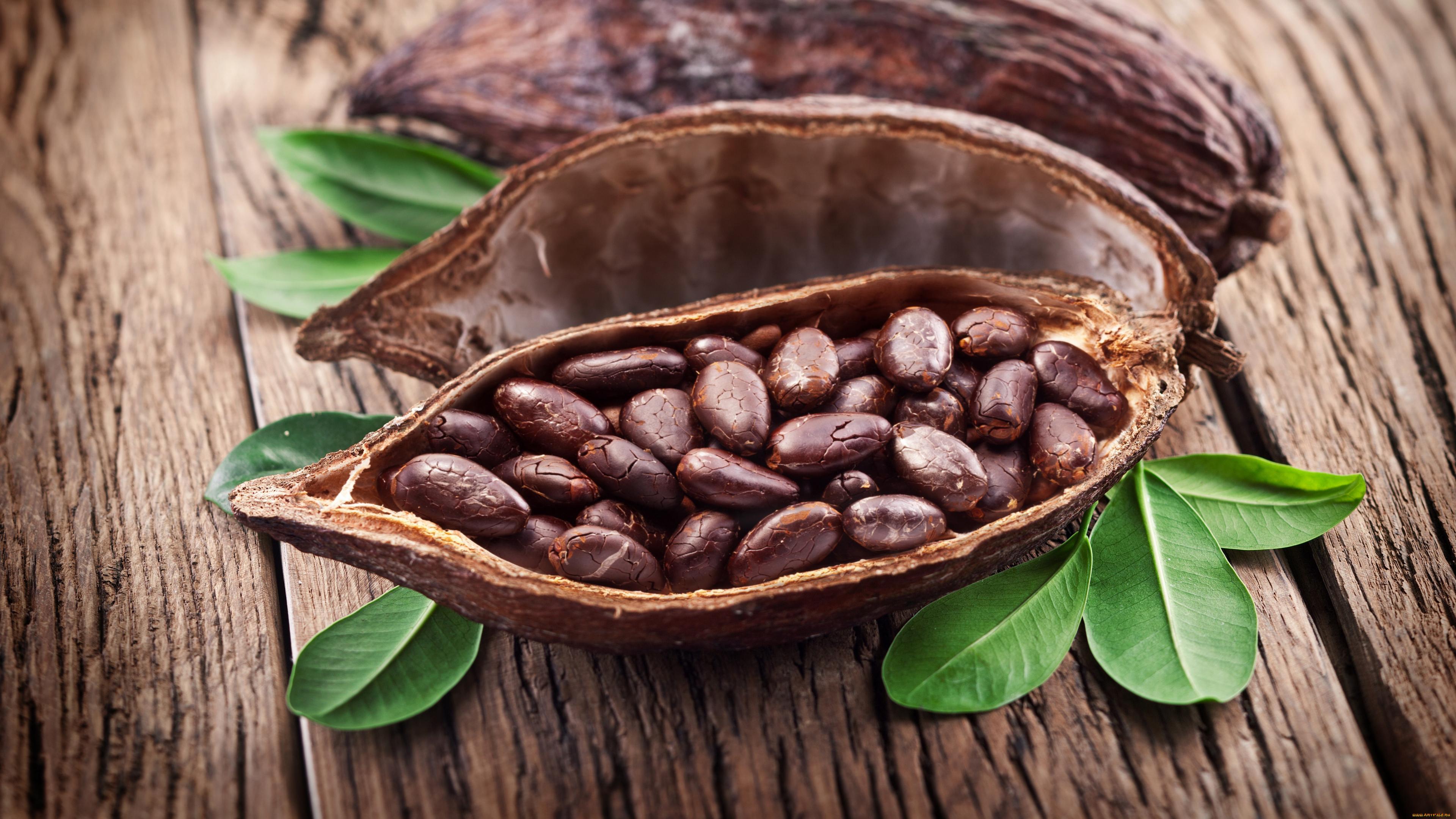 Какао помогло легче справляться с физическими упражнениями