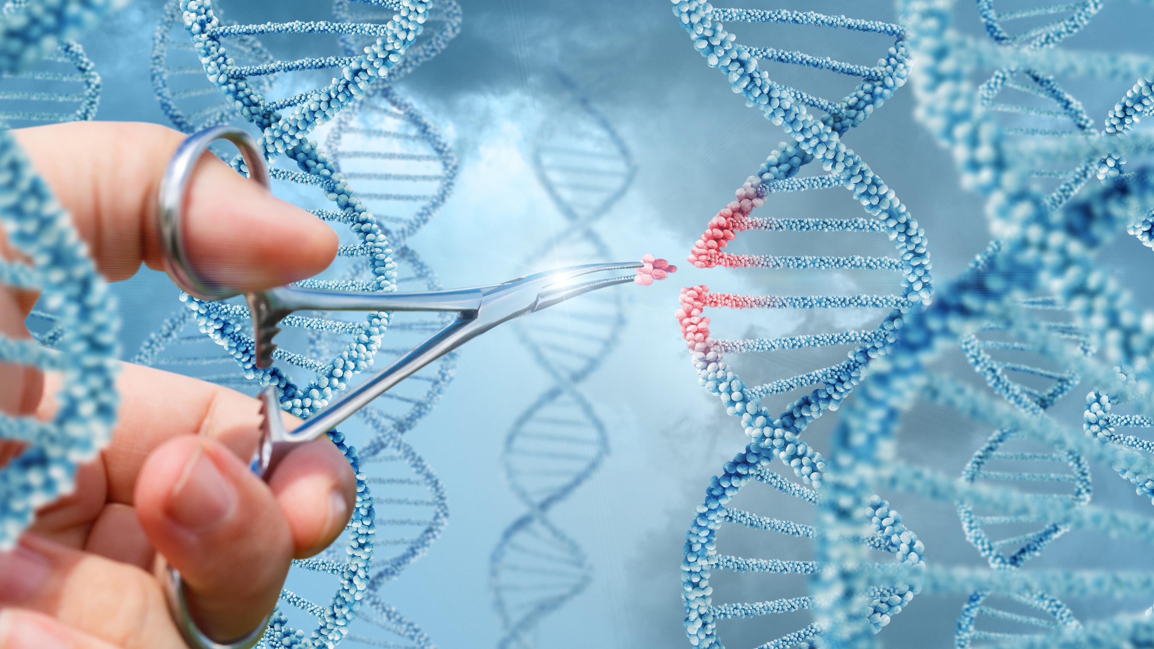 Новый этап в изучении и лечении шизофрении: генное редактирование с помощью CRISPR/Cas9