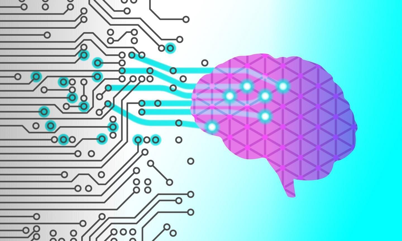 Первый взгляд на ошибочное вспоминание в мозге