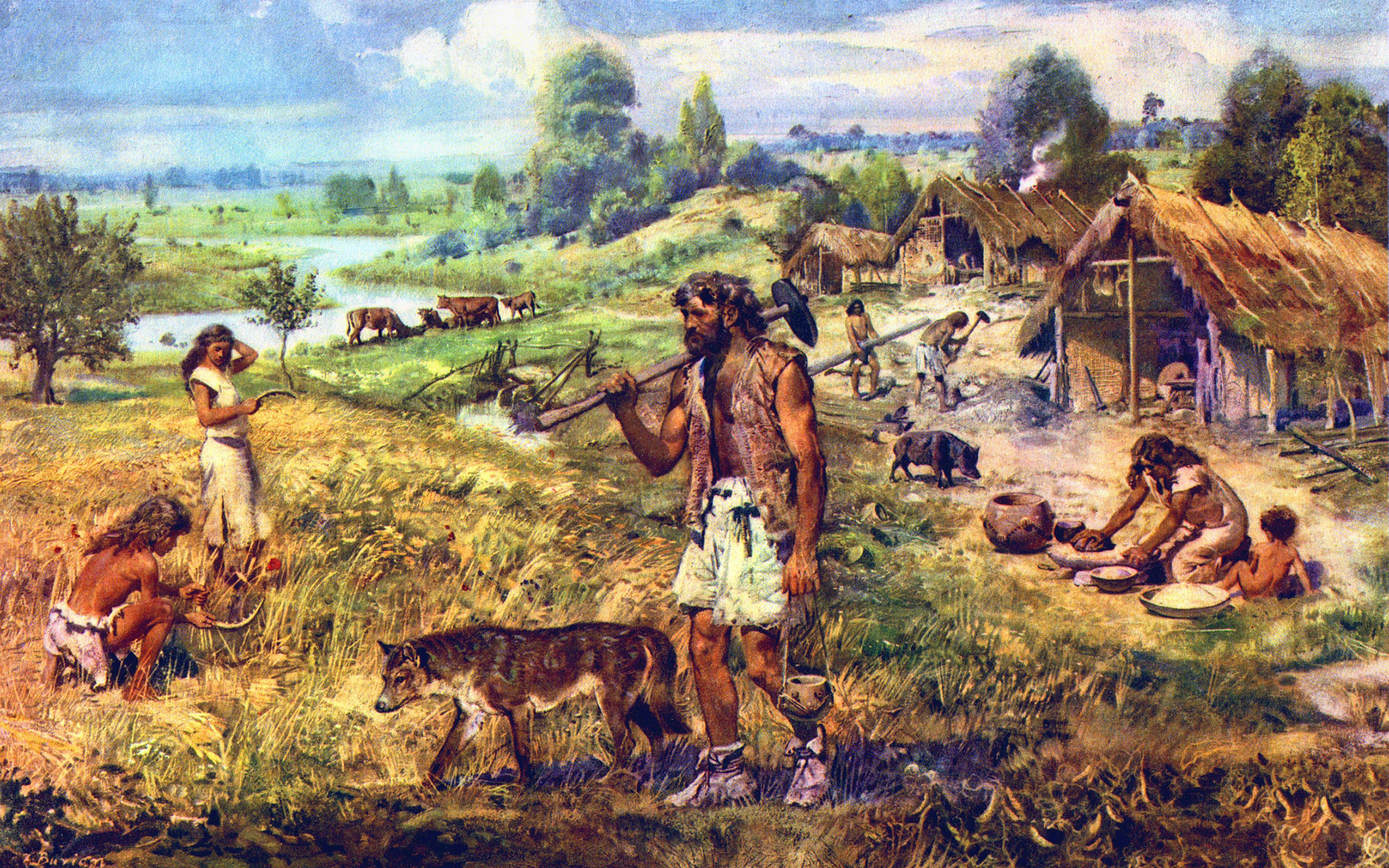 Палеогенетики раскрыли происхождение древних популяций Центральной Европы