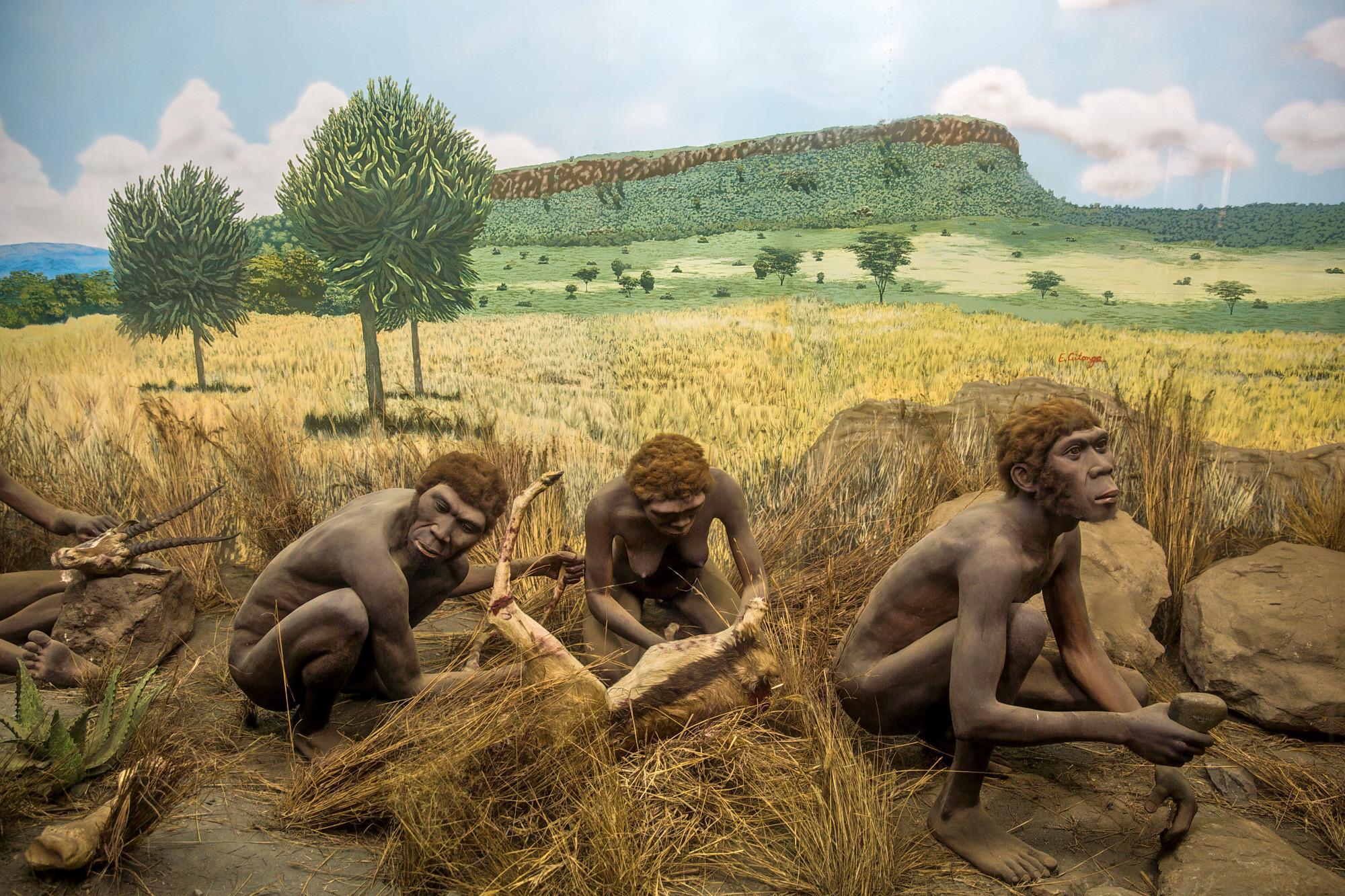 Климат или враги: что запирало Homo sapiens в Африке четверть миллиона лет