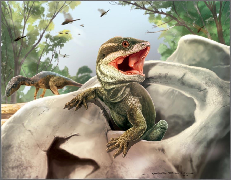 Аргентинский «отец ящериц» пролил свет на эволюцию чешуйчатых и клювоголовых