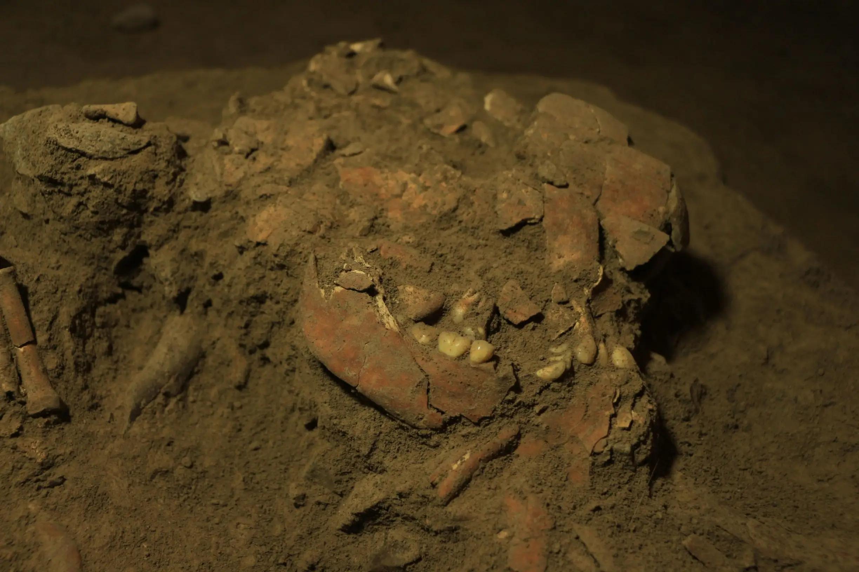 Генетики обнаружили неизвестную ранее популяцию древних людей на Сулавеси