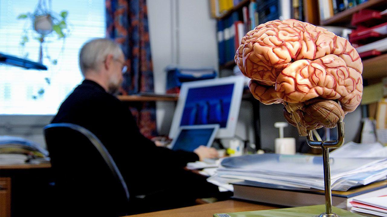 Объем рабочей памяти предсказывает долговременную память