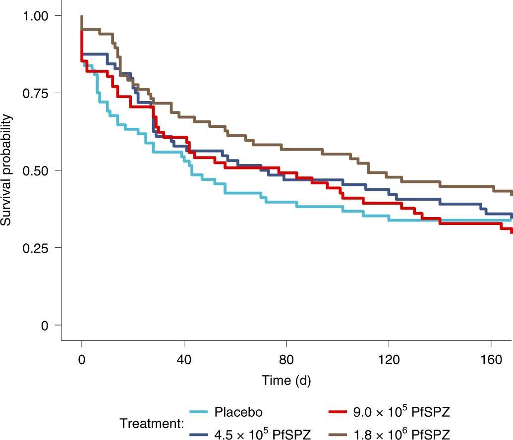 Причина неэффективности противомалярийных вакцин у детей связана с незрелостью T-лимфоцитов