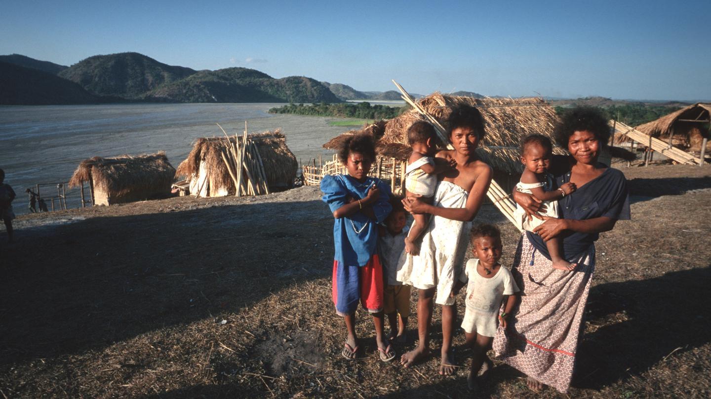 У негрито денисовская примесь больше, чем у папуасов