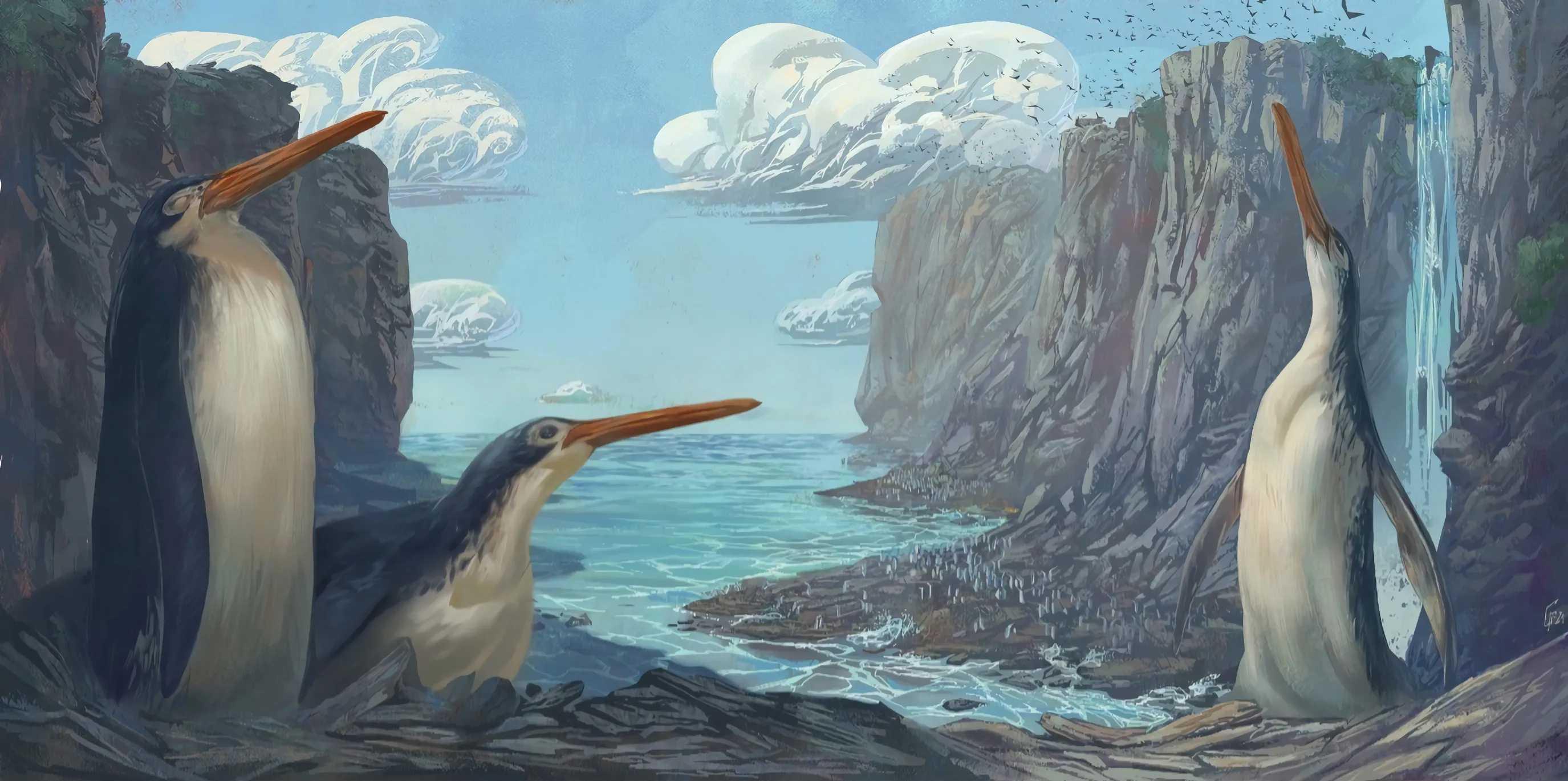 Найденный школьниками ископаемый гигантский пингвин получил научное описание 15 лет спустя