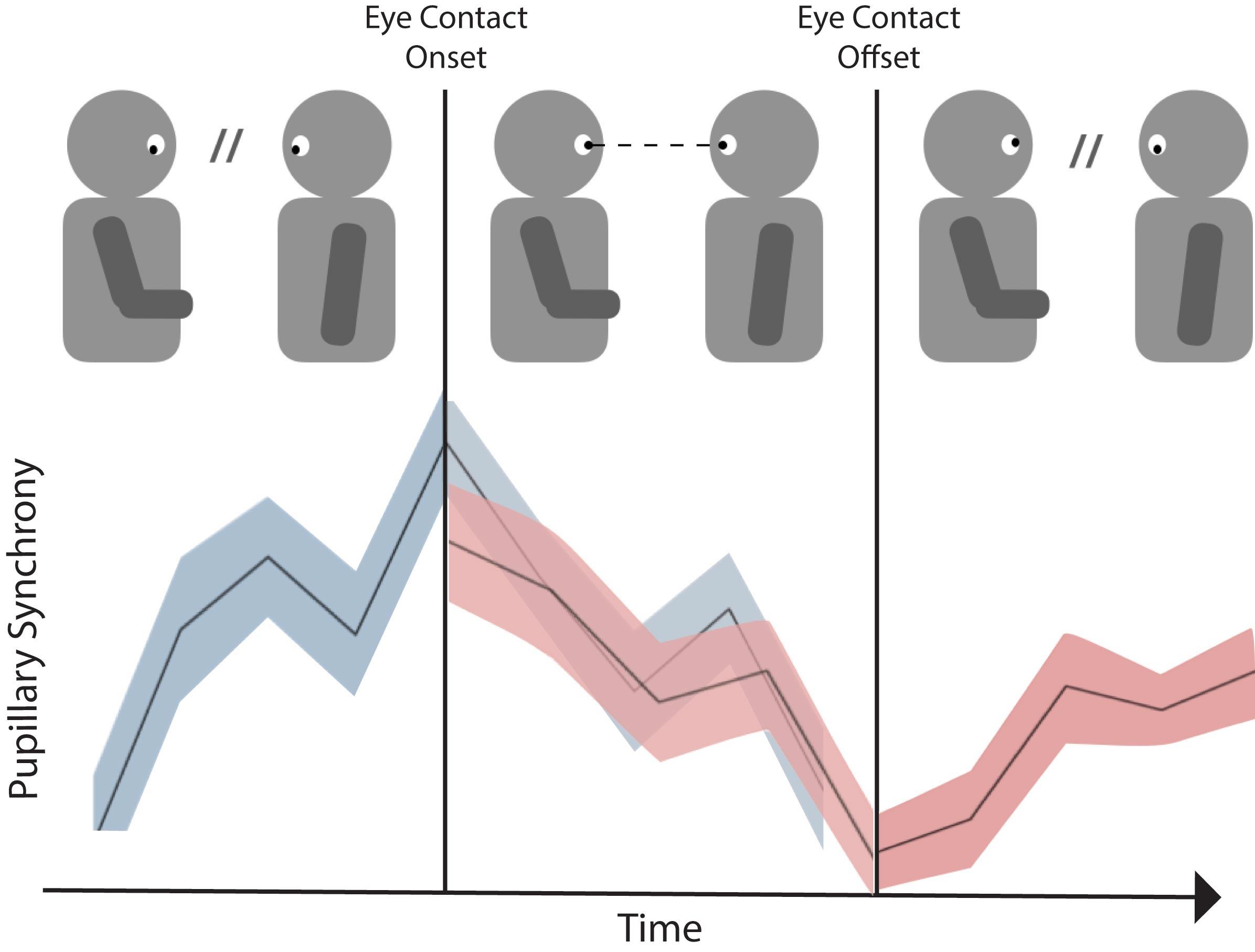 Ученые выяснили, как зрительный контакт делает беседу более увлекательной