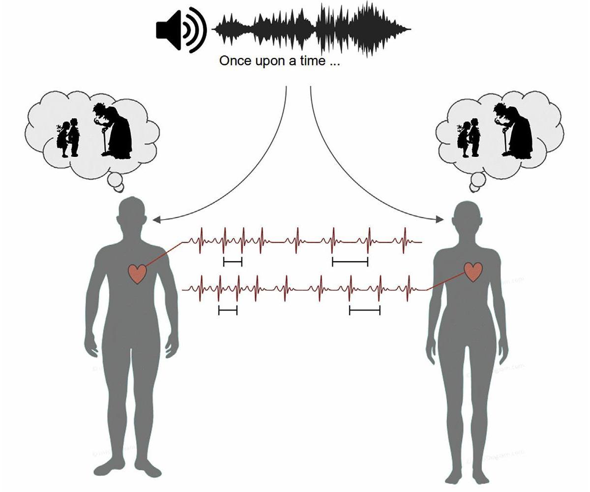 Ритм нескольких сердец может синхронизироваться при прослушивании людьми одной истории