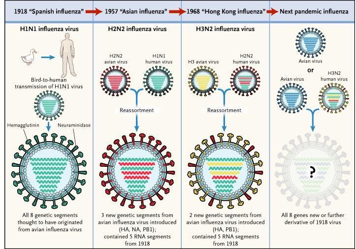 Конспиративная пандемия. Чему нас учит «русский грипп»