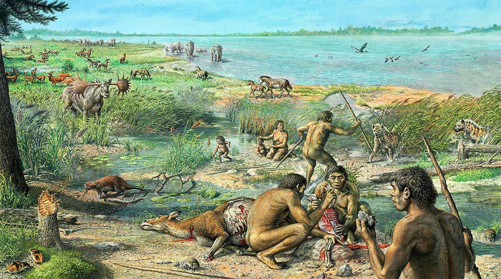 Мясной рацион ограничивал популяции охотников-собирателей