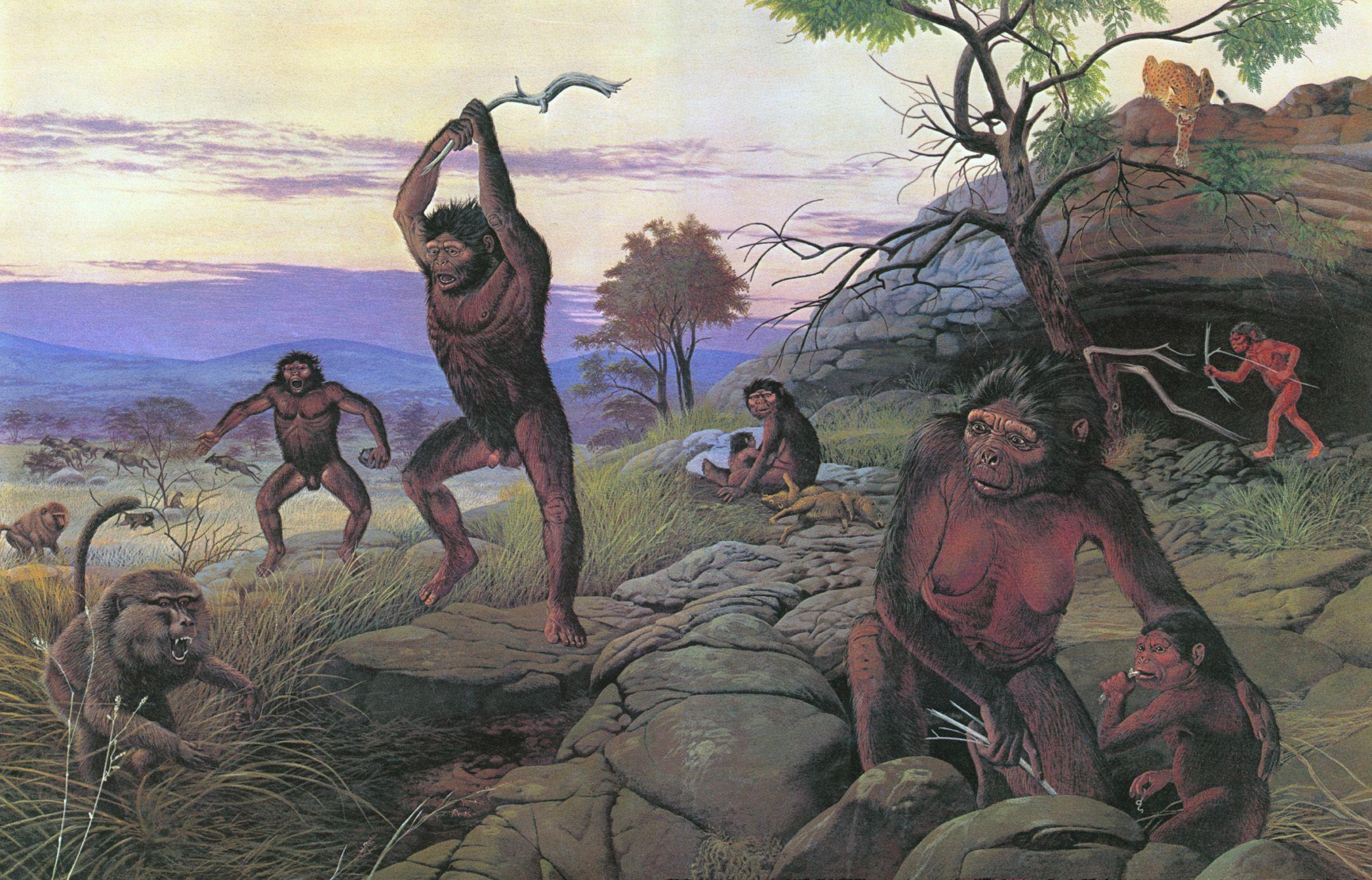 Выяснилось, какими были условия окружающей среды первых людей в Европе