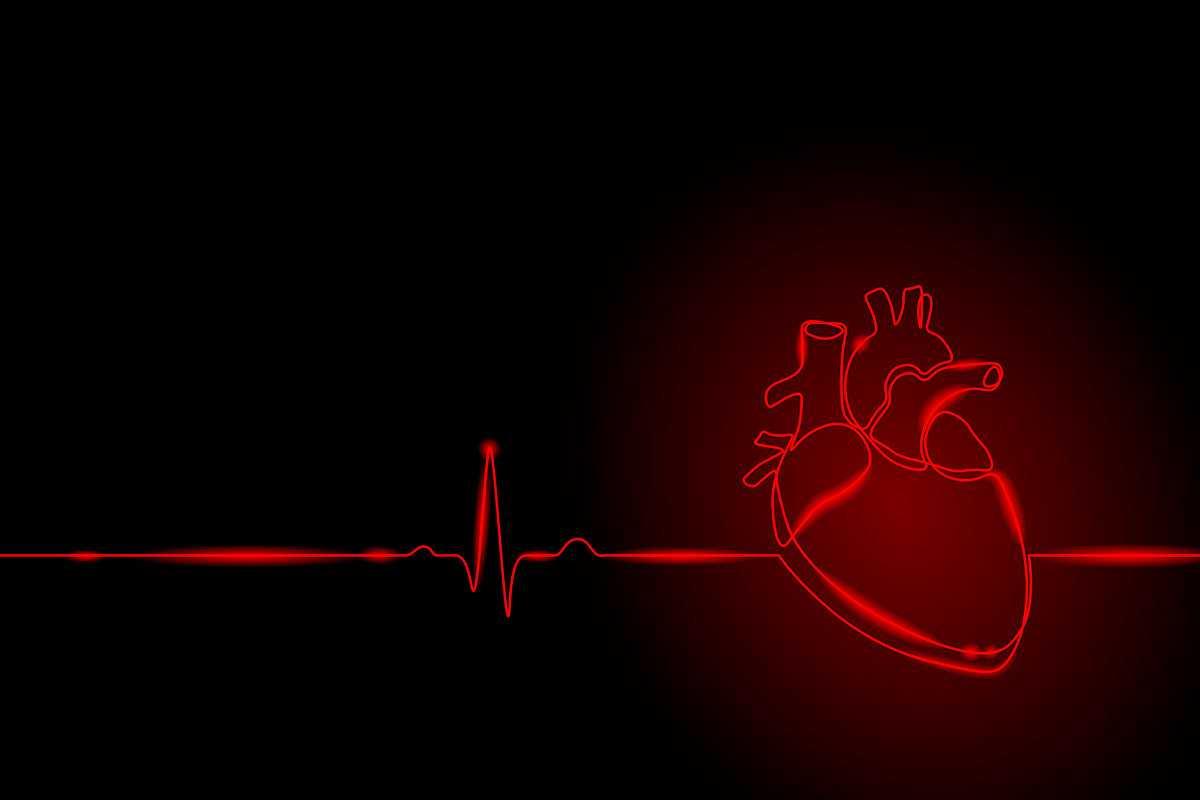 Радиация омолаживает сердце