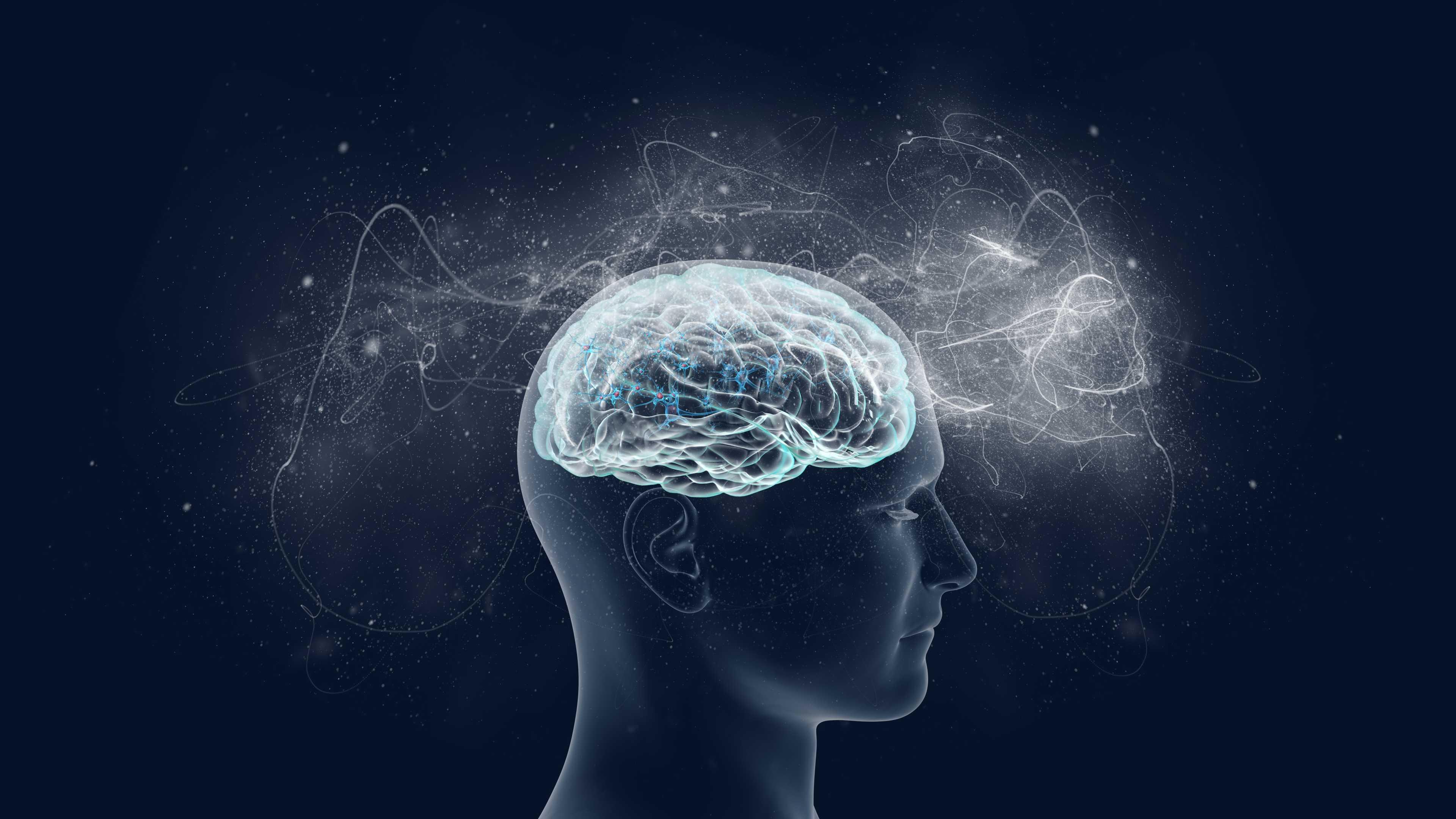 Исследователи «прочитали» мозговую активность при магнитной стимуляции памяти