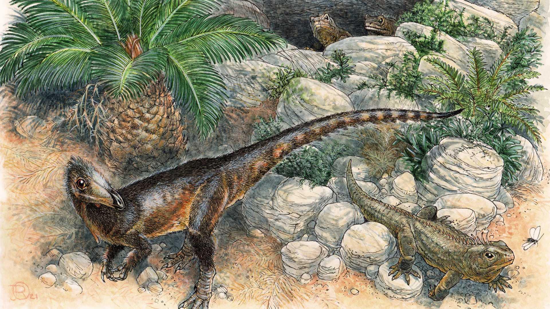 Древнейшего хищного динозавра Великобритании назвали в честь отца короля Артура