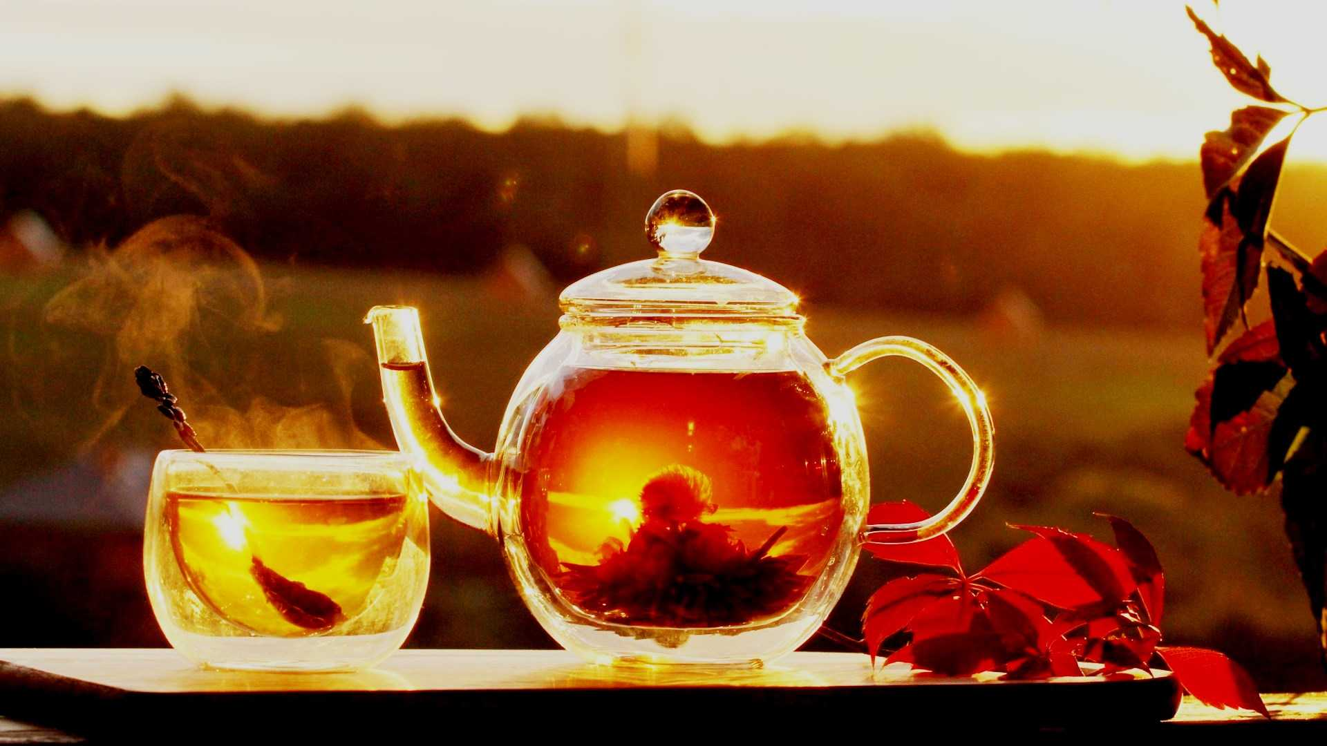 У катехинов зеленого чая обнаружили «парадоксальную» пользу